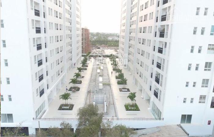 Chọn mua chung cư hay nhà đất